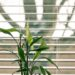 Ultrasonic Blinds Cleaning Services